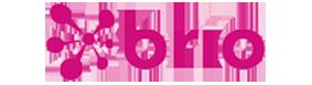 Brio-banner
