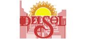 DelSol-banner
